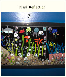 Flash Reflection With Lens Distortion